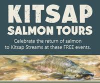 Salmon Tours