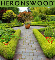Heronswood Plant Sale: Hellebores and More