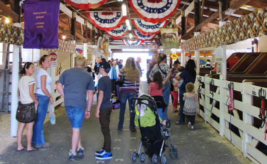 Get Ready to Stirrup Some Fun at the Kitsap County Fair & Stampede