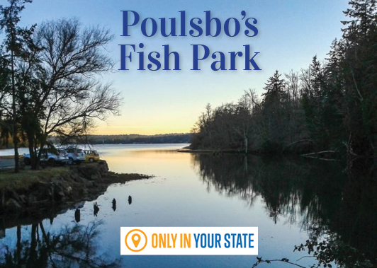 Only in Your State Article on Poulsbo's Fish Park
